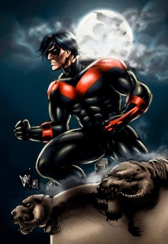 Nightwing (alternate color version) by FantasticMystery