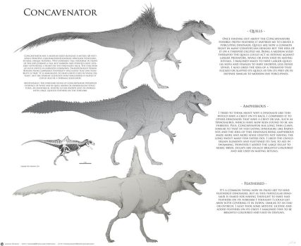Concavenator rough designs by JoshuaDunlop