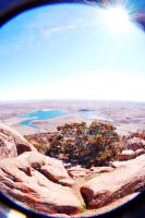 Top of Mt Scott by SublimeBudd