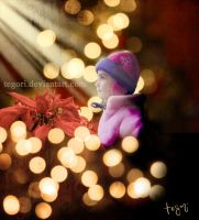 Christmas wish by Tegori