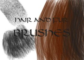 Hair and Fur Brushes by arwenpotter