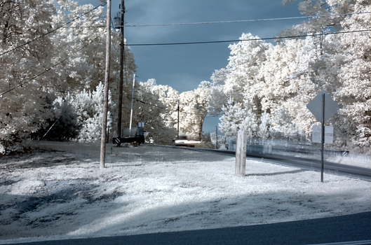 Looking up the road in IR by cloudcity
