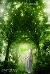 Light through the woods by starlight2infinity