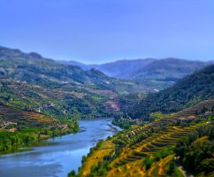 O Douro by siulzz