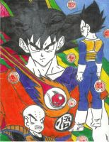 Dragon Ball Z by Stewie56
