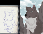 Sketch and Finished: Little Wolf by KillerSandy