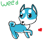 Weed Love! by catfoxkiya