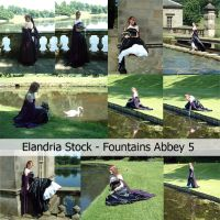 Fountains Abbey Stock Set 5 by Elandria