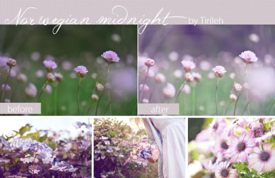 Photoshop Action -Norwegian Midnigh. {free} by Tirileh