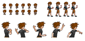 Trainer Nayrman214 Sprite Sheet by NetNaviDarko415