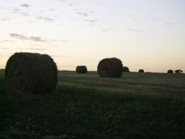 hay bales by x-fcuk-x