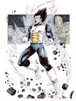 SOLD OUT: Vegeta by Shono