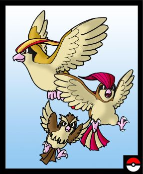 Pidgey Family by ZappaZee