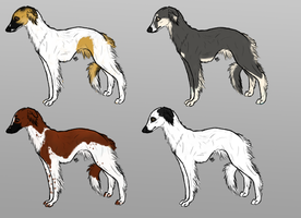 Longhaired Whippet Imports- CLOSED by Raxakorico