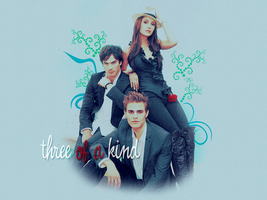 Vampire Diaries Team by ElficaDraconis