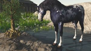 Horse in stream 061314 by fractal2cry