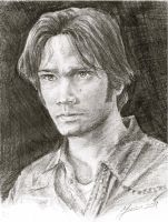 Sam in Pencil by Montanajin