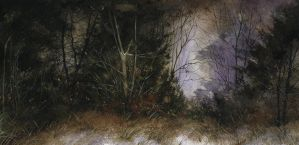 winter night after hendershot by dholms