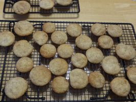 Snicker Doodles!!! by Ayame6464