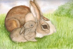 Bunnies by Lilyfer