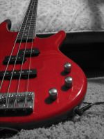 Bass. by vendebted