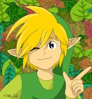 Toon Link by Nocta-Link
