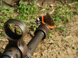 butterfly efffect by Anestis9985