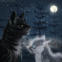 The second life of the Tigerstar. Warriors by Romashik-arts