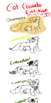 Cat Character evolution by LordNative