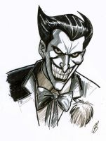 The Joker by BigChrisGallery
