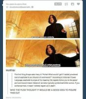 Snape. by TheFunnyAmerican