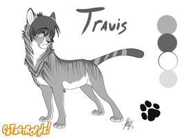 Travis Reference Sheet by AeroSocks