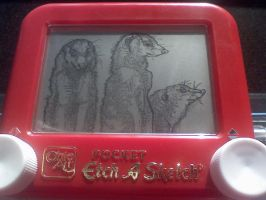 Etch a Sketch- Meerkats by jivu