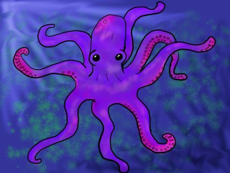 Octopus by nofoolin
