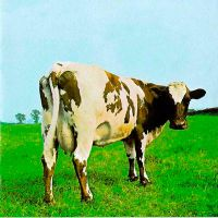 Pink - Atom Heart Mother by pinottis