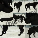 Realistic  wolf preset for FH by WhiteClaw15