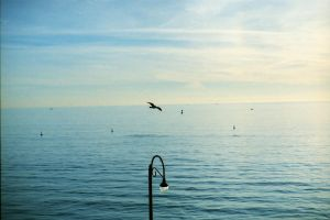 Horizon, Flying, Composition. by kehkuansun