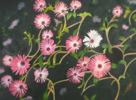 Ice Plant by aakritiarts