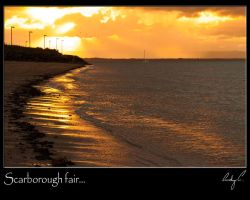 Scarborough fair by 2Stupid2Duck