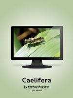 Caelifera Light by theRealPadster