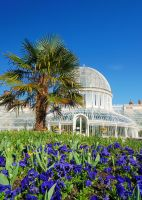 Botanic Palm House by Gerard1972