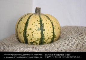 Pumpkin 005 by Lelanie-Stock