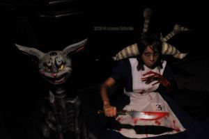 American McGee's Alice by Amano7