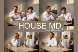 House MD - Isn't It Bromantic by KaitoSai