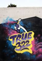 True322 by bakeroner