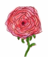 A Simple Rose by FTSArts