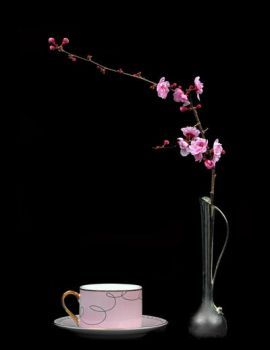 Spring Plum 051 by hfpierson