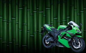Kawaski Wallpaper by ShaquilleQ