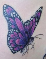 butterfly tattoo by twinklyfairypants