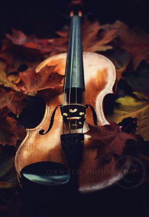 autumn song by Orwald